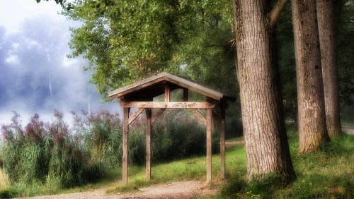 Brown Wooden Gazebo Beside Tree
