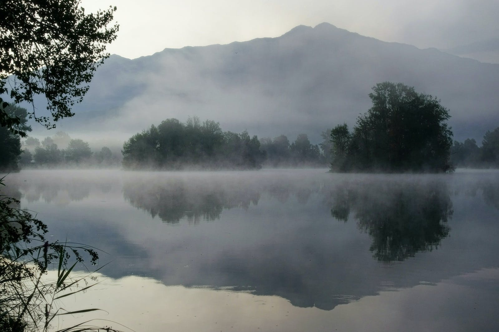 Bosy of Water Surrounded by Mist