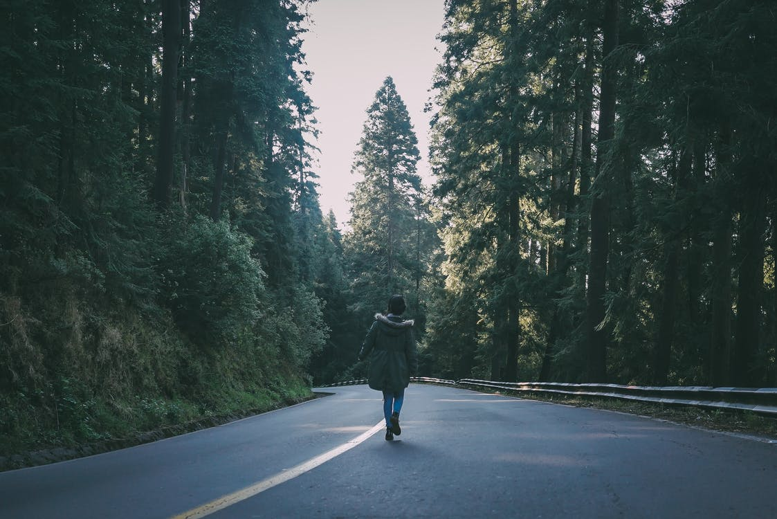 Woman Wearing Black Parka Jacket Walking on Black Concrete Road Surrounded by Trees