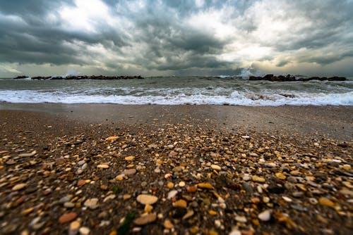 Безкоштовне стокове фото на тему «берег, берег моря, махати, море»