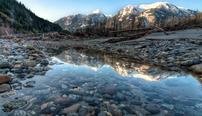 1000+ Beautiful Natural Photos · Pexels · Free Stock Photos