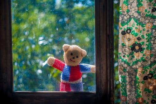 Gratis stockfoto met alleen, beer, eenzaam stuk speelgoed, knuffel