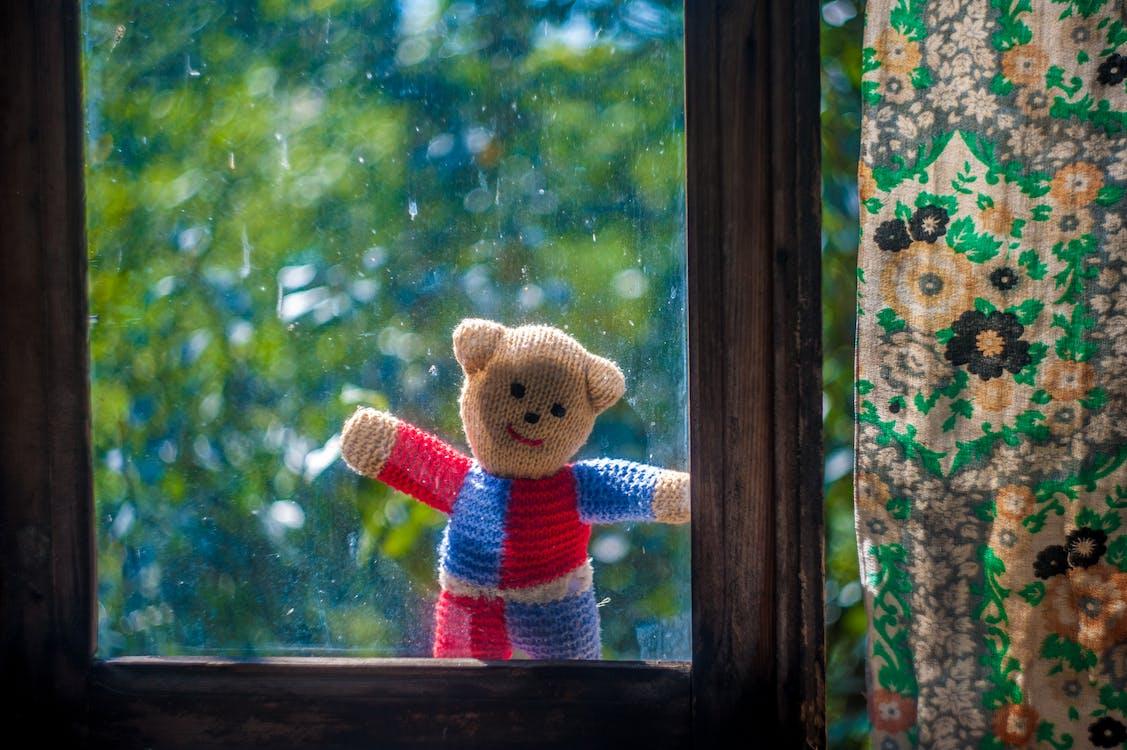 alleen, beer, eenzaam