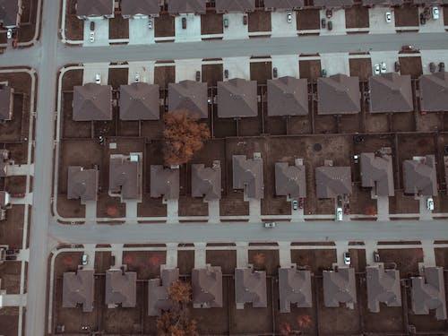 ağaçlar, araba yolu, arabalar, çatılar içeren Ücretsiz stok fotoğraf
