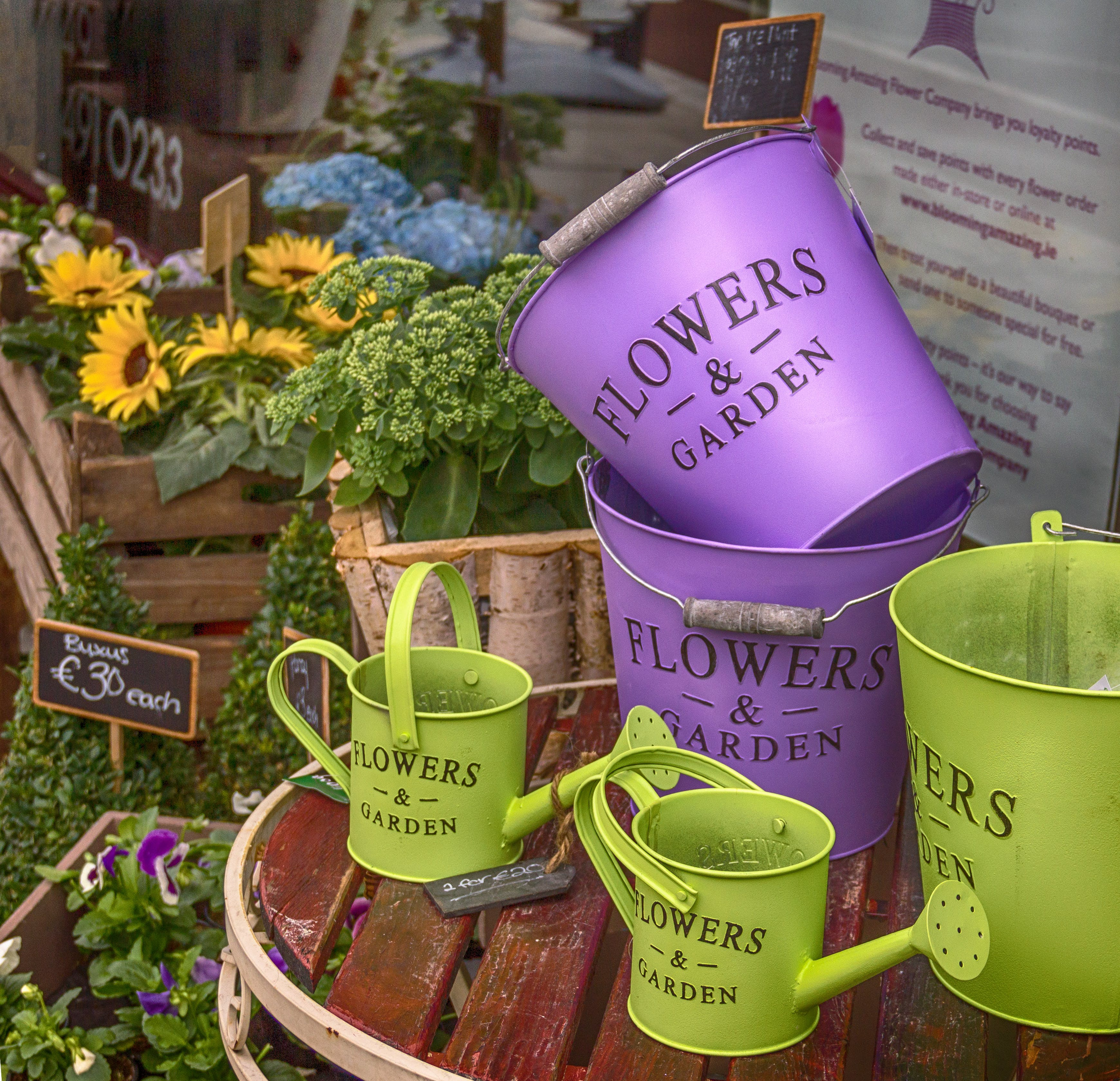 Free stock photo of bucket, composition, decoration, flower shop