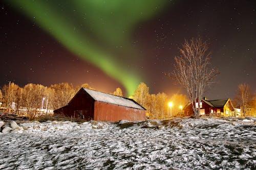 Immagine gratuita di aurora boreale, freddo, inverno, leggero