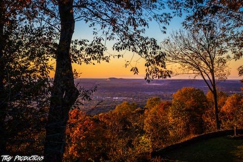 คลังภาพถ่ายฟรี ของ huntsville, vibes ฤดูใบไม้ร่วง vibes, การถ่ายภาพทิวทัศน์, การเคลื่อนย้าย