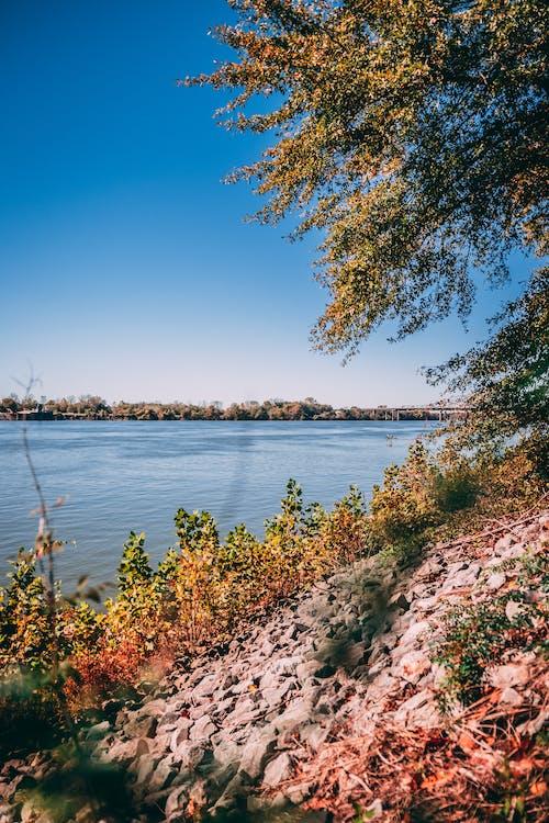 คลังภาพถ่ายฟรี ของ huntsville, vibes ฤดูใบไม้ร่วง vibes, การก่อตัวของหิน, การถ่ายภาพทิวทัศน์
