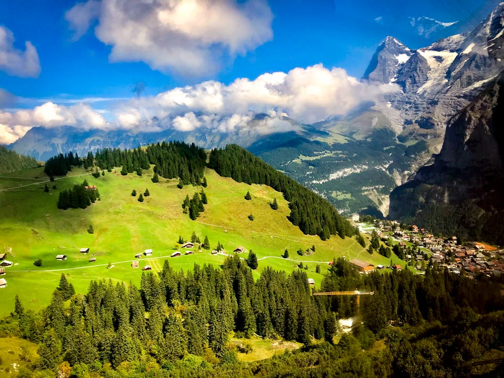 Town in Mountain With Green Trees