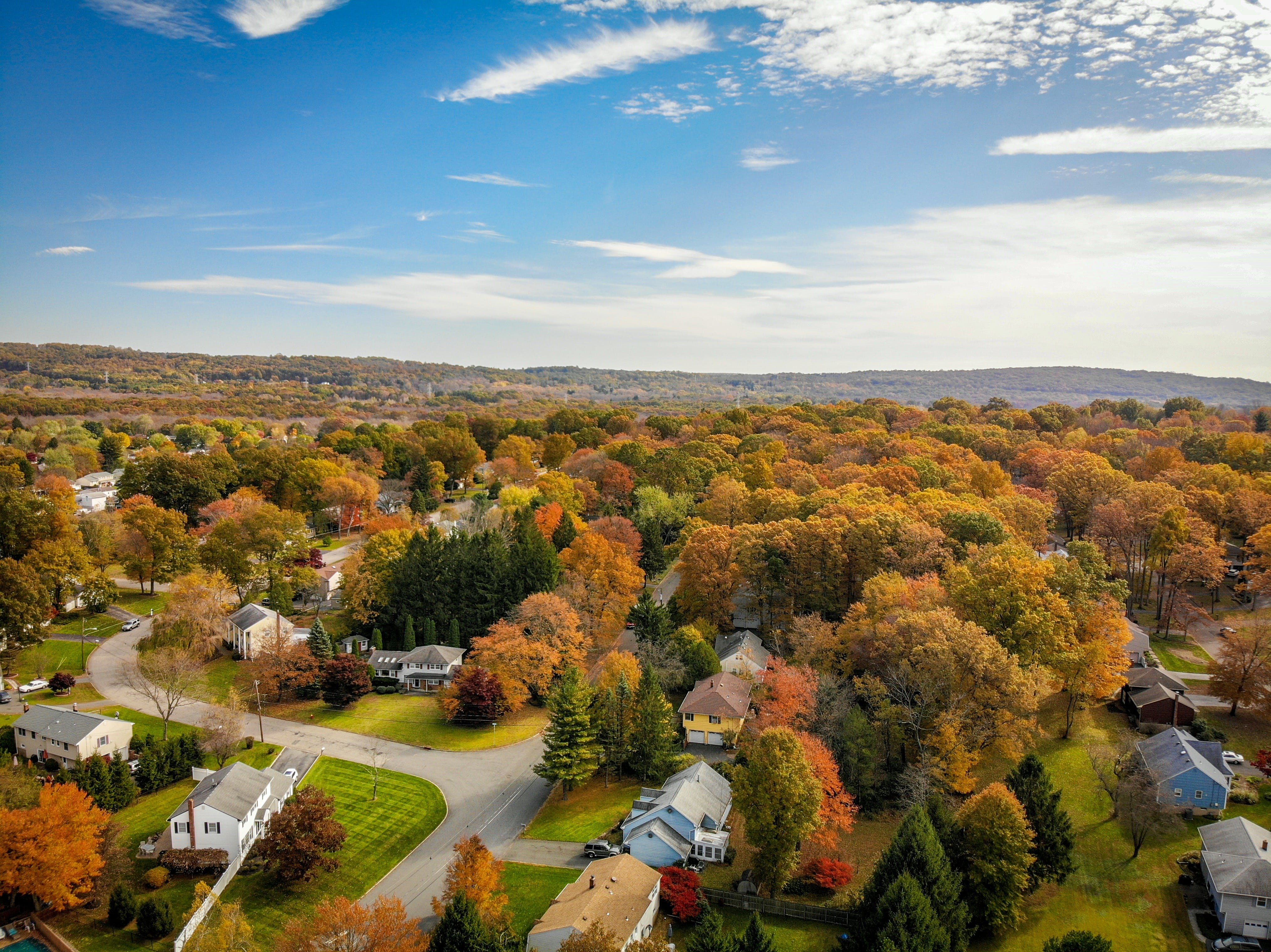Aerial Photography of Houses Surrounded by Trees