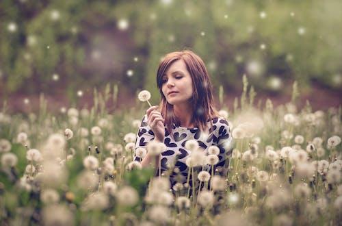 Kostnadsfri bild av äng, blommor, fält, flicka