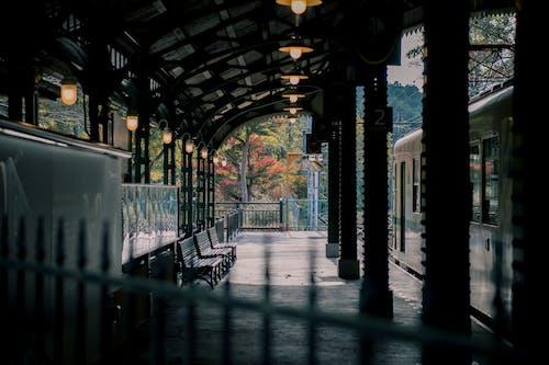 Foto d'estoc gratuïta de buit, entrenar, estació, estació de tren