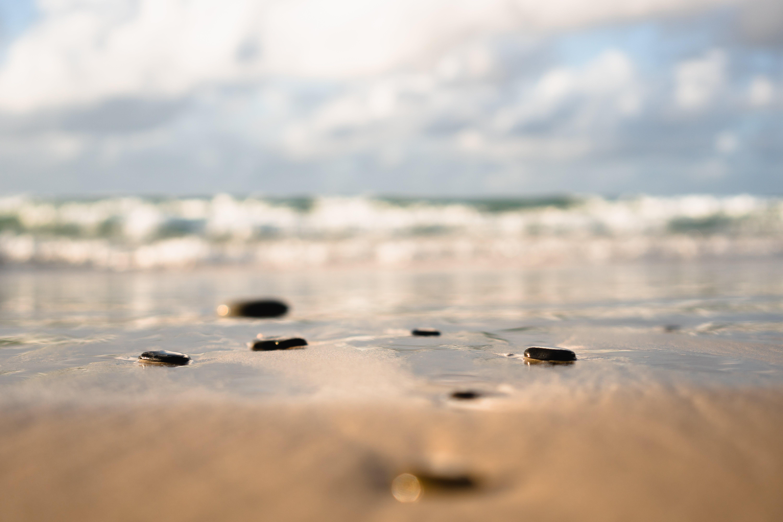 Selective Focus Photography of Shoreline