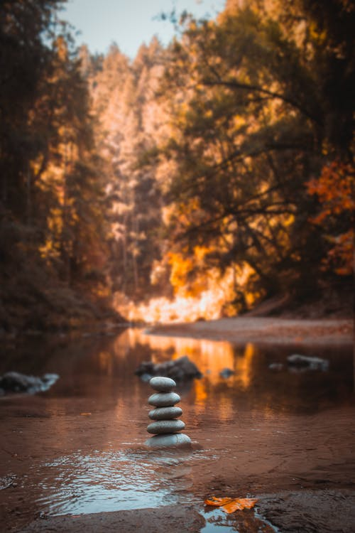 反射, 岩, 日光
