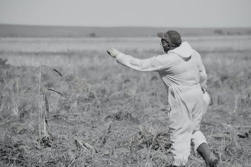 Foto stok gratis afrika selatan, bahan kimia, cerah, gersang