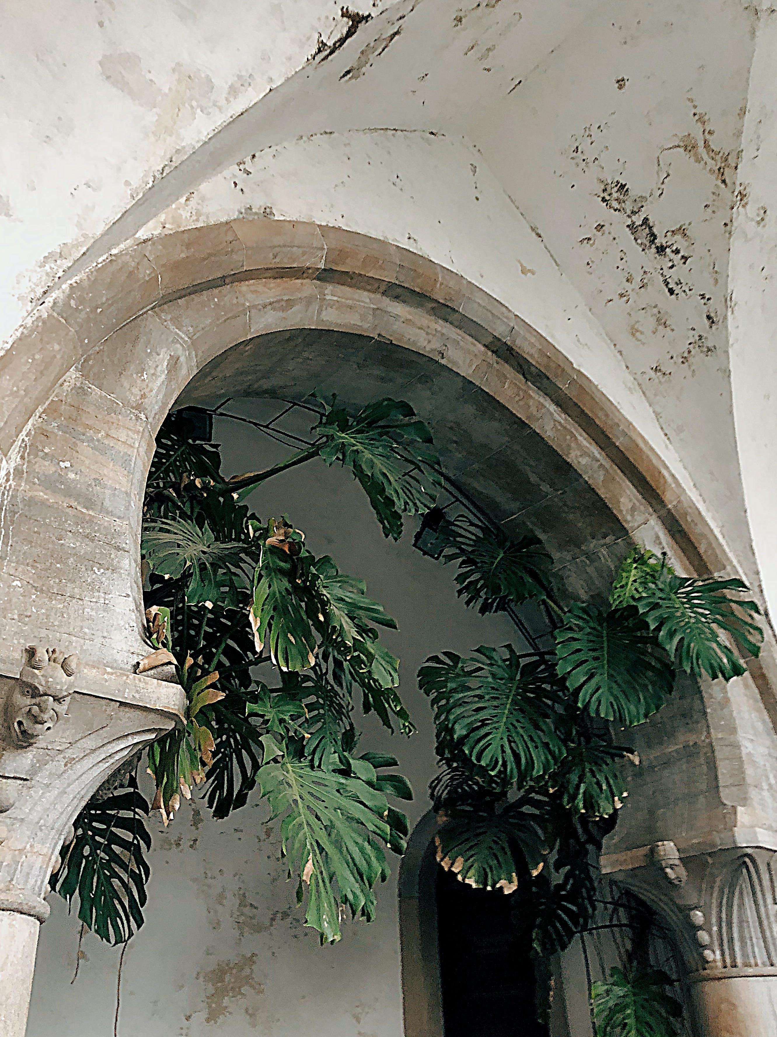 Základová fotografie zdarma na téma architektura, budova, denní světlo, design