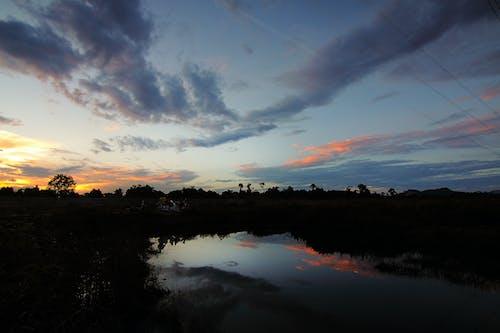 Gratis stockfoto met avond, bomen, dageraad, h2o