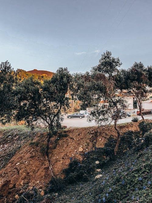 Gratis lagerfoto af bakke, gade, jord, klippe