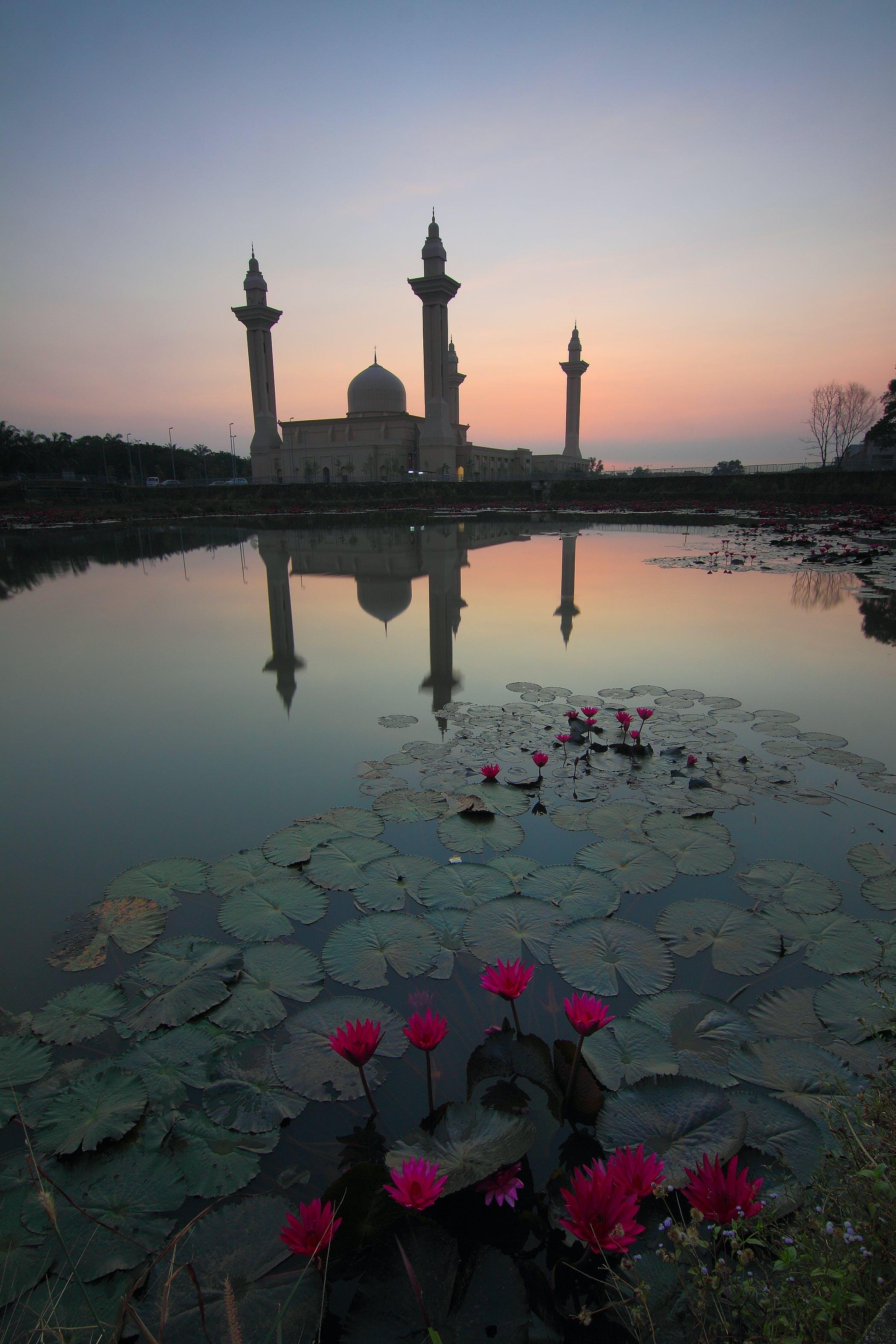 Free stock photo of landscape, sky, sunset, lights