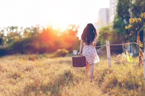 들판, 사람, 새벽, 소녀의 무료 스톡 사진