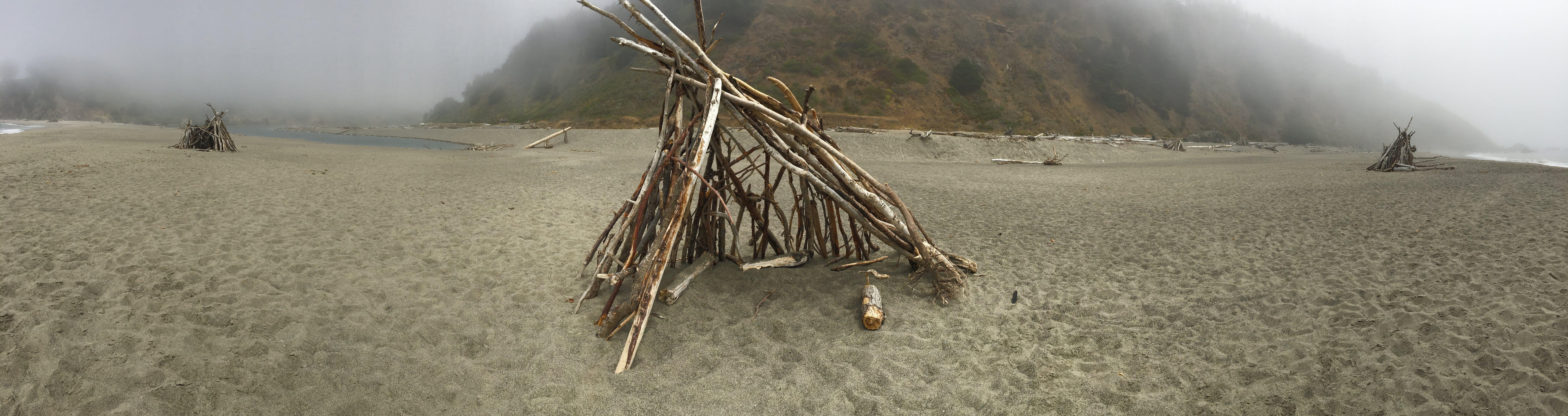 Free stock photo of beach, california, coast, driftwood