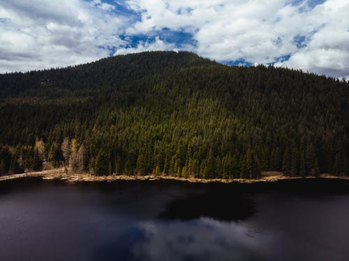 Free stock photo of dji, drone, forest, lake hood