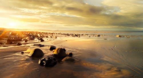 Foto profissional grátis de à beira-mar, água, alvorecer, areia