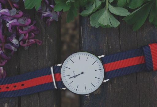 Blue and Red Strap Silver Round Analog Watch Beside Purple and Green Leaf Plant