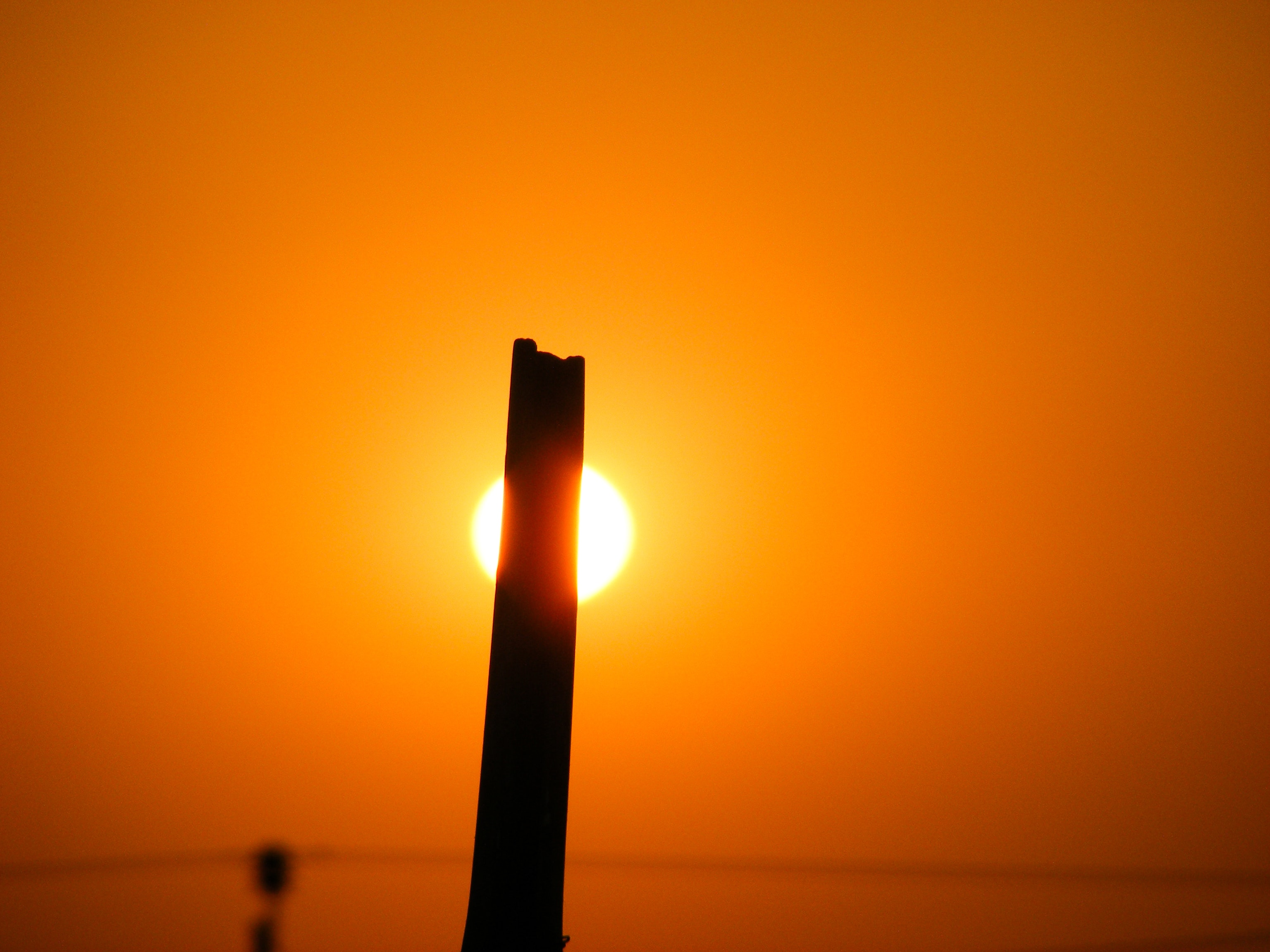 Free stock photo of golden sun, sun, sun light