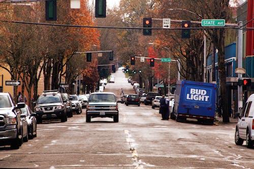 Imagine de stoc gratuită din mașinile stradă căderea frunze deal
