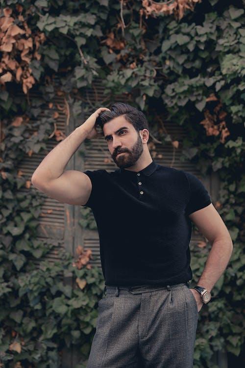 Бесплатное стоковое фото с борода, волос, волосы, затворы