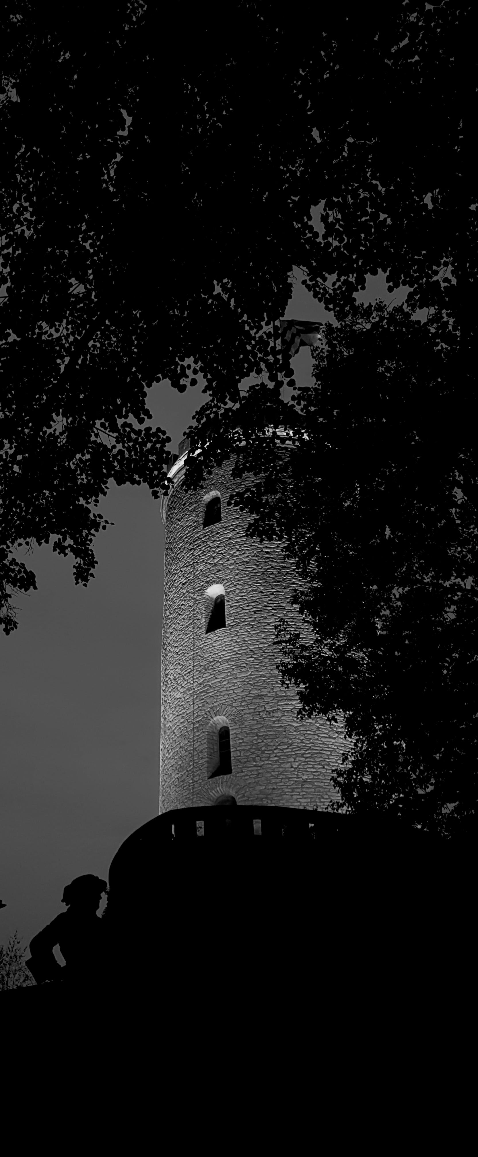 Free stock photo of bell tower, black and white, castle, dark