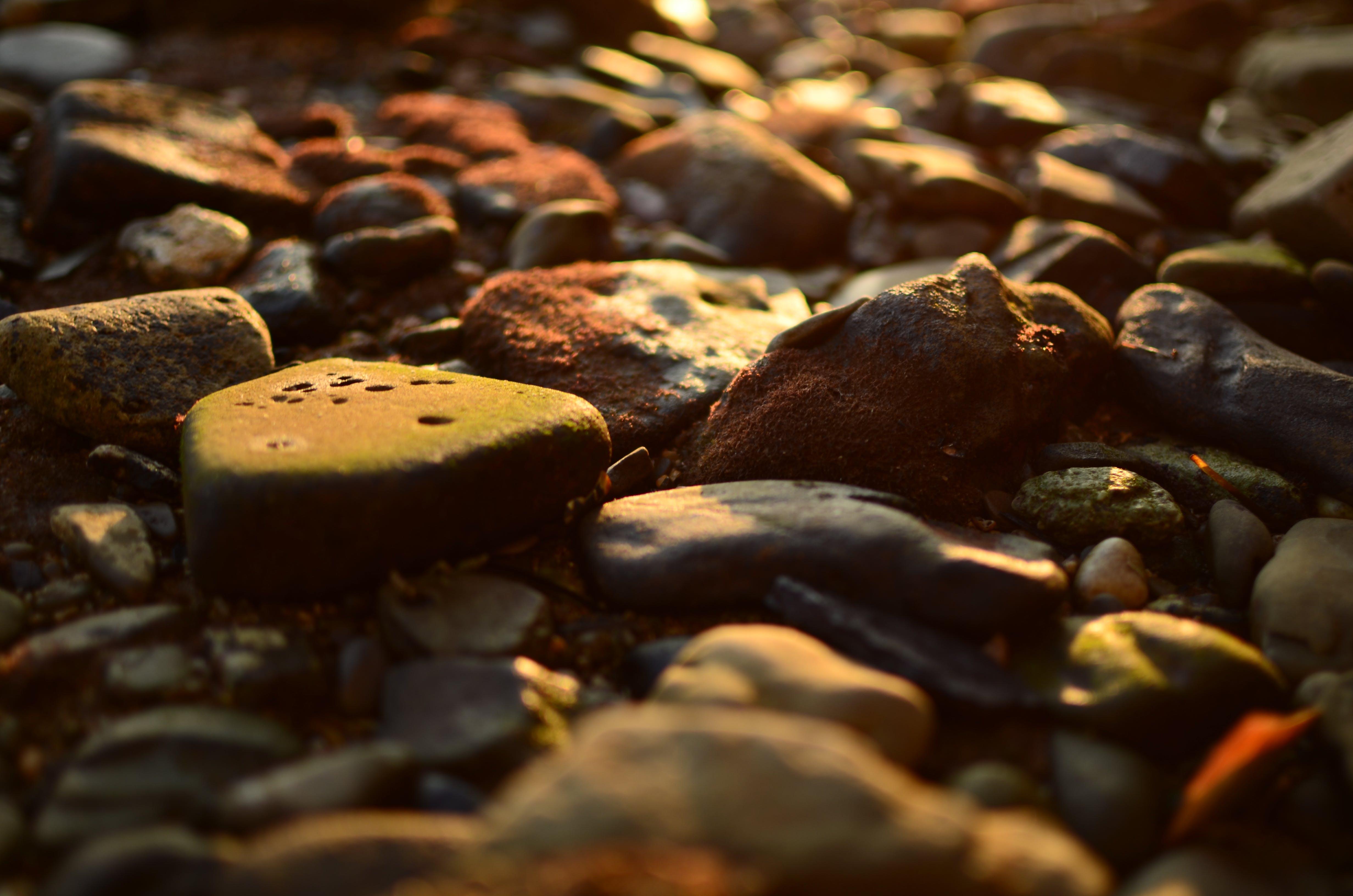 岩, 日光, 石, 色の無料の写真素材