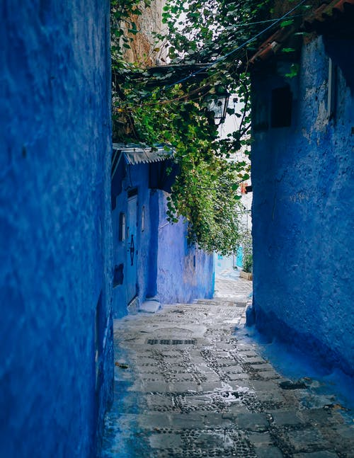 Blue Wall Alley
