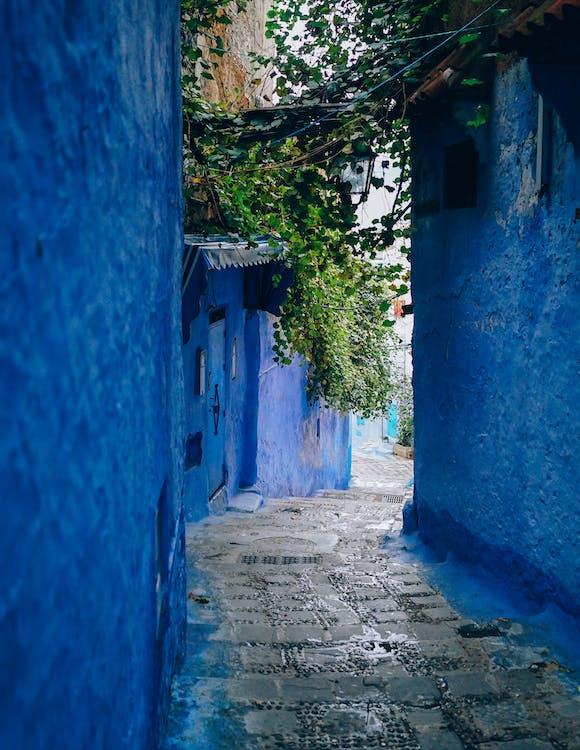 Blue Wall Alley