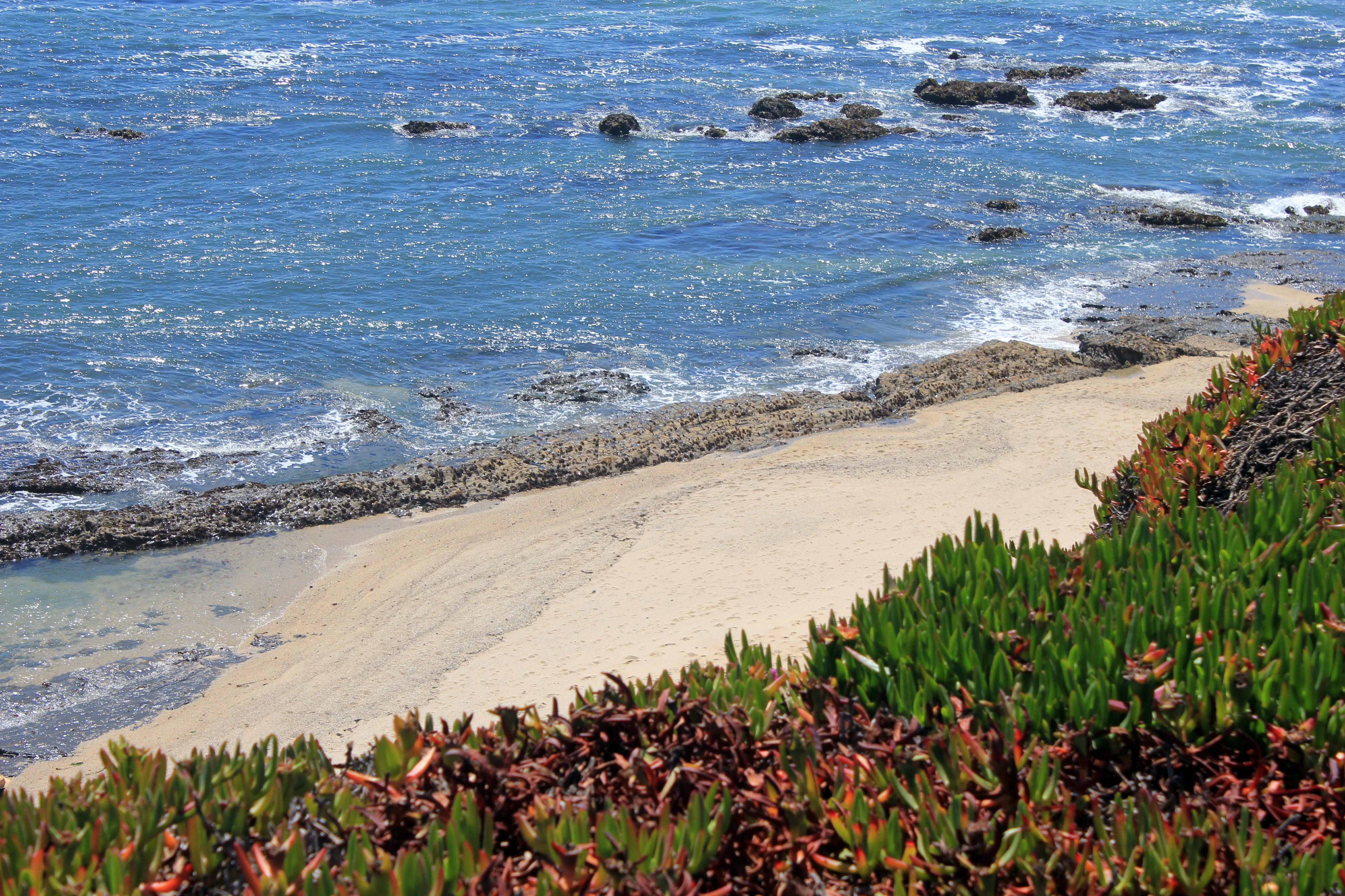 of ocean, panoramic view