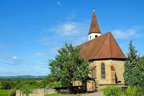 Fotos de stock gratuitas de antiguo, árbol, arquitectura, capilla