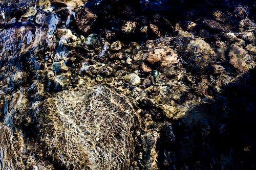 冷, 岩石, 日光, 水 的 免费素材照片