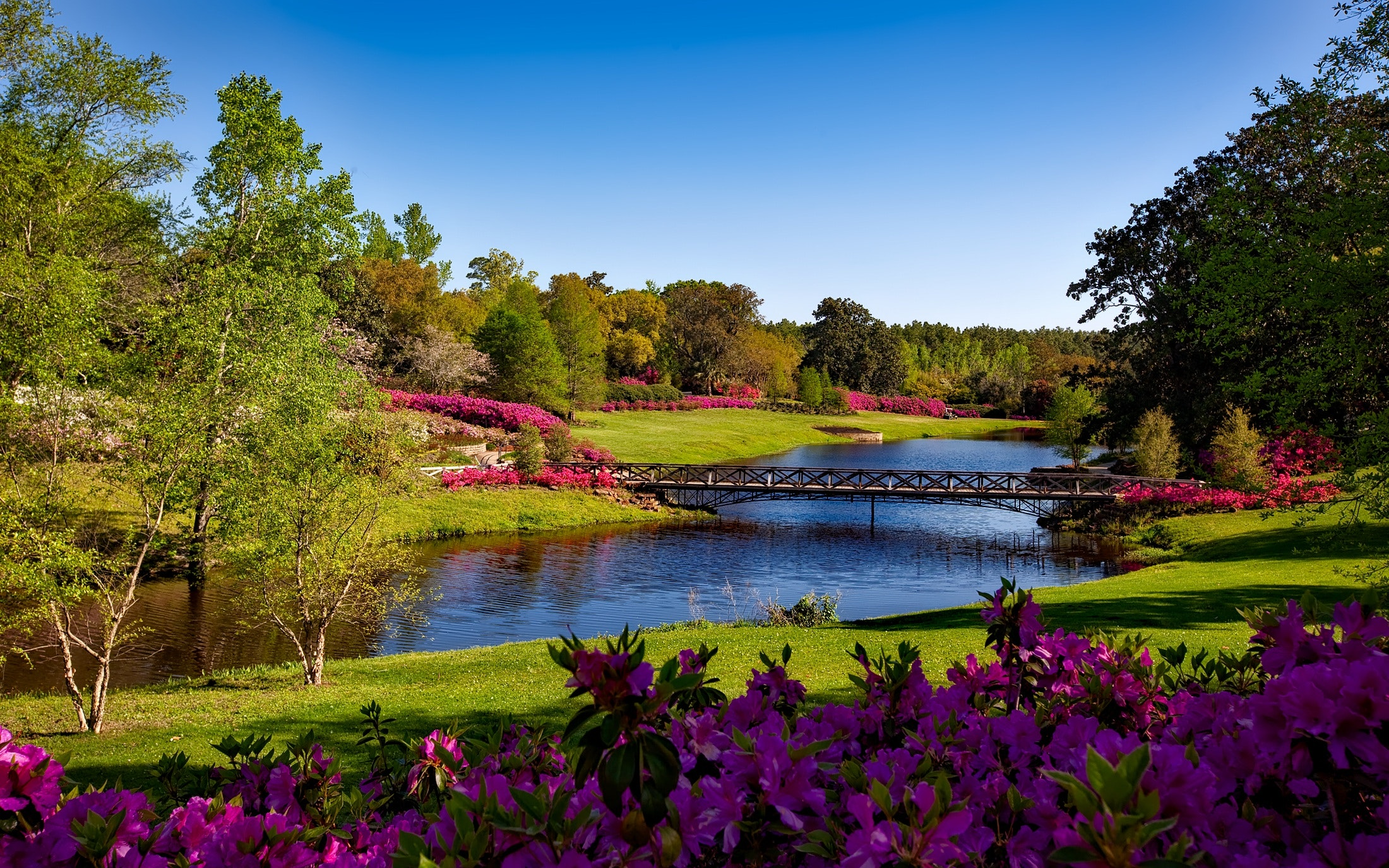 Most Inspiring Wallpaper High Resolution Scenery - bellingrath-gardens-alabama-landscape-scenic-158063  Picture_33308.jpg\u0026fm\u003djpg