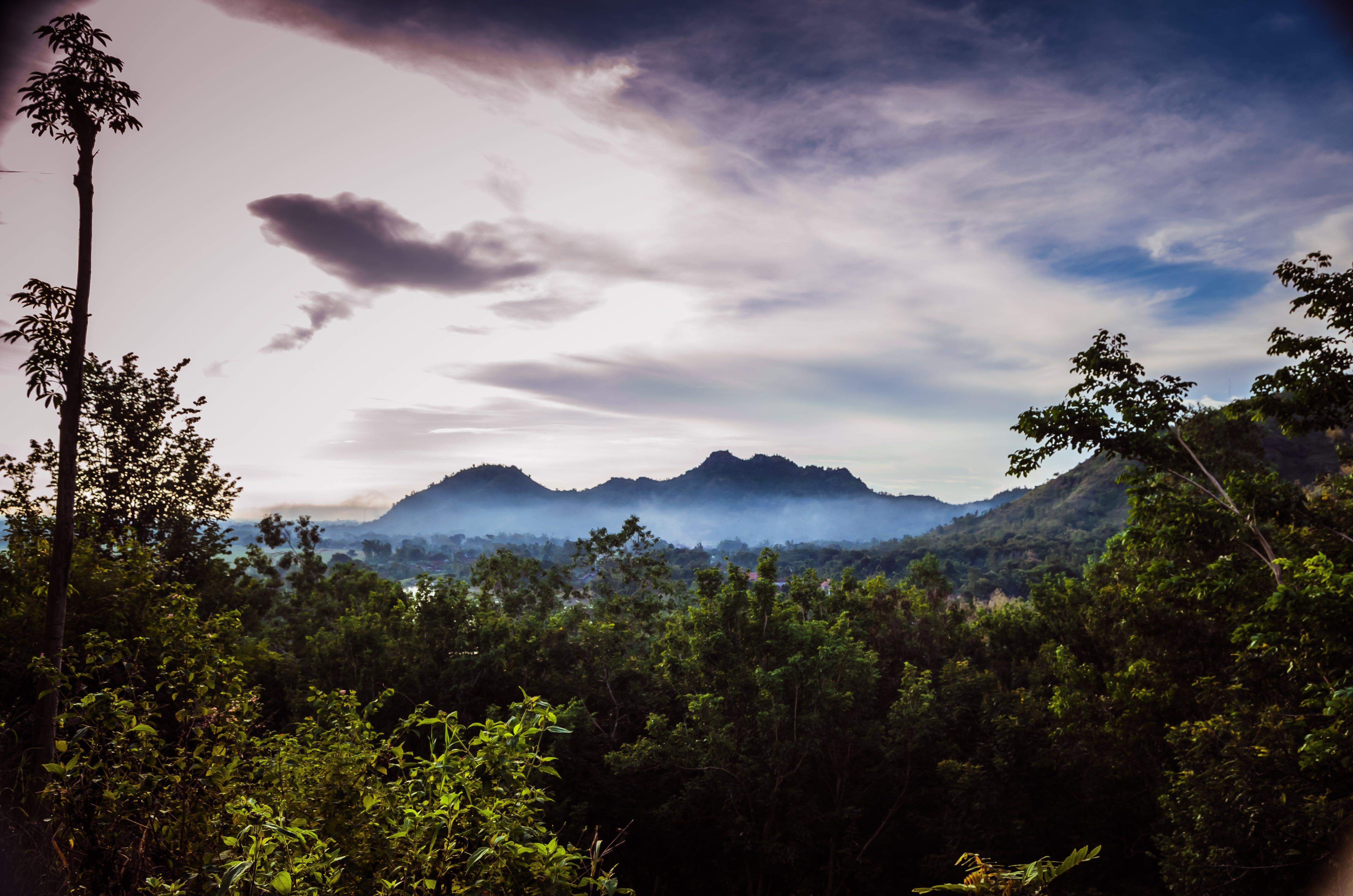 Základová fotografie zdarma na téma 4k tapeta, dešťový prales, HD tapeta, hory