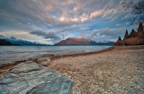 Photos gratuites de arbres, bord de mer, caillou, ciel