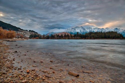 Imagine de stoc gratuită din apă, arbori, cer, gheață