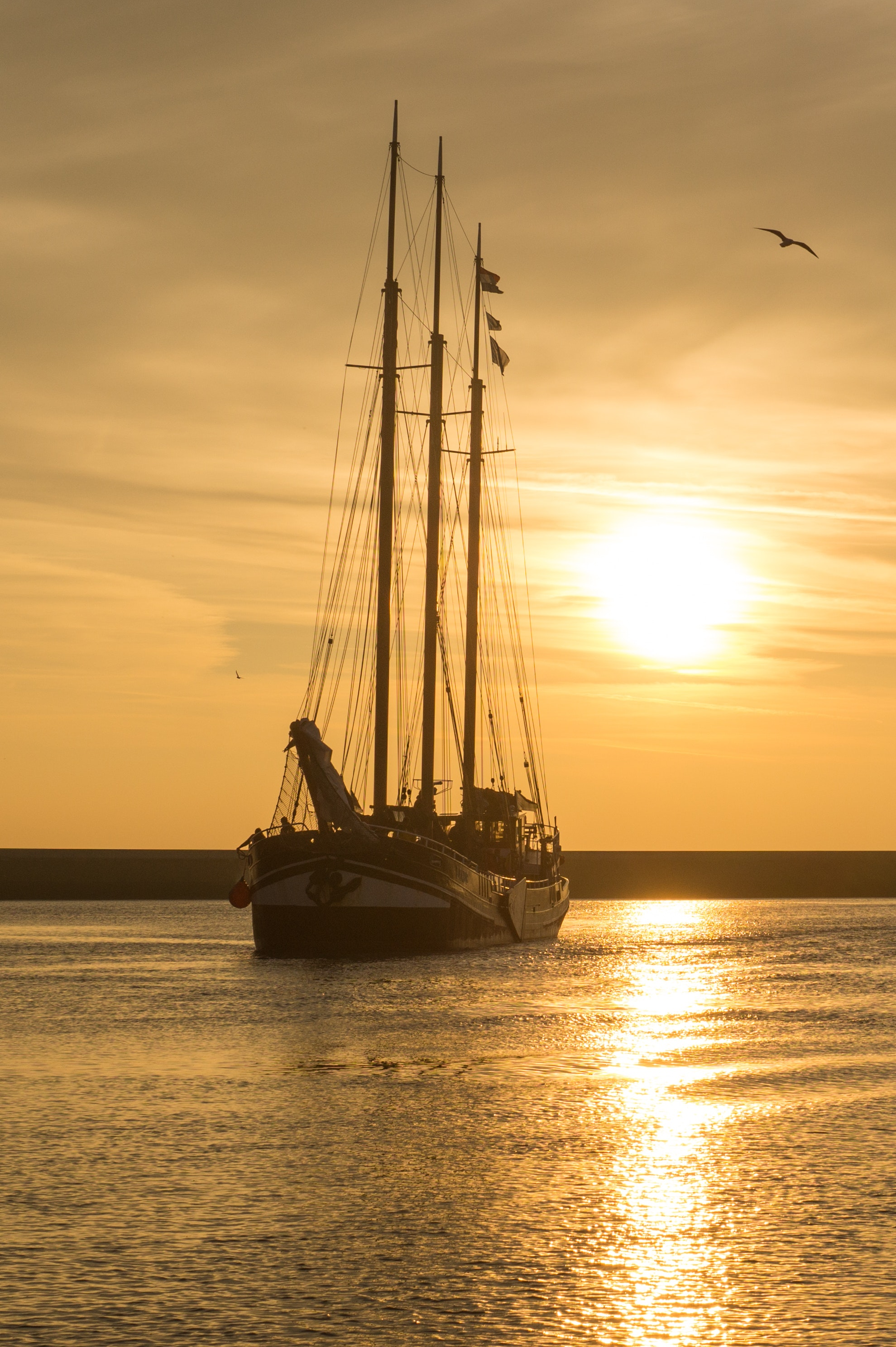 sailboat on body of water during sunset 183 free stock photo