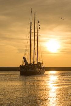 Free stock photo of sea, sunset, water, sun