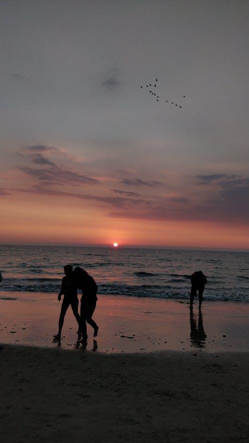 Základová fotografie zdarma na téma večerní obloha, západ slunce