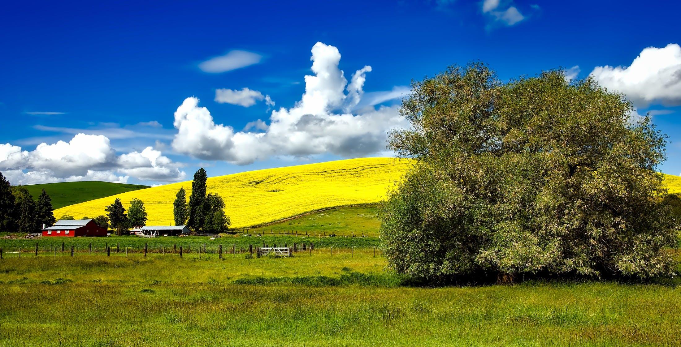 Kostenloses Stock Foto zu landschaft, himmel, wolken, feld