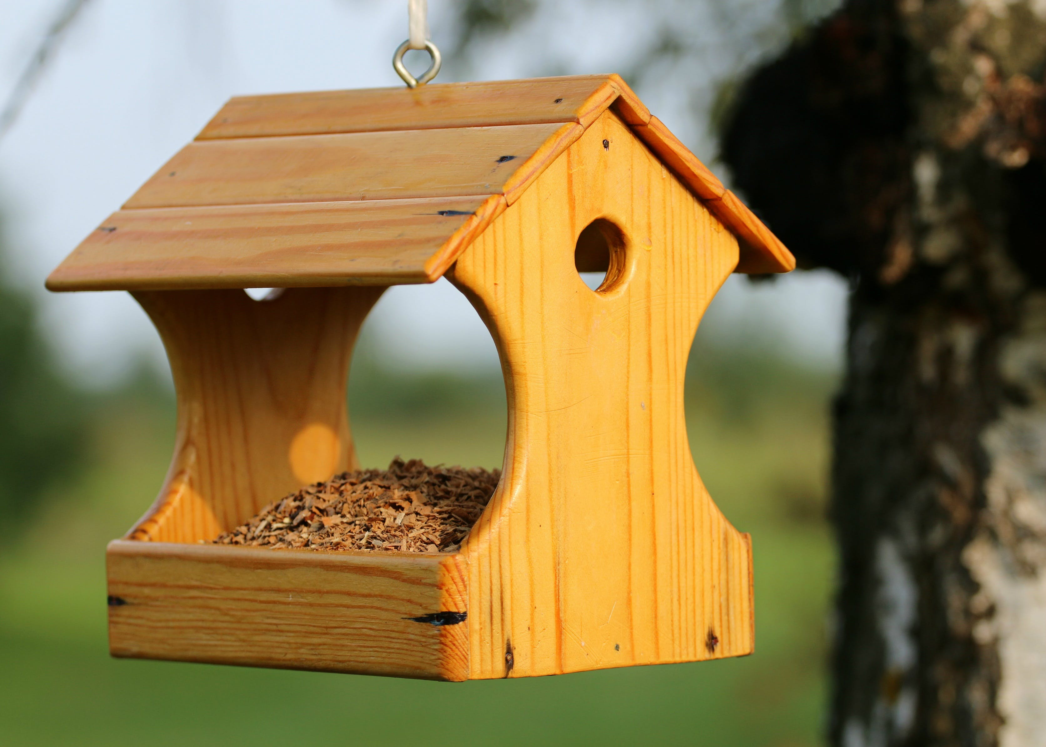 Brown Wooden Bird House Hanging on Tree