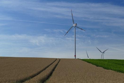 White Windmills