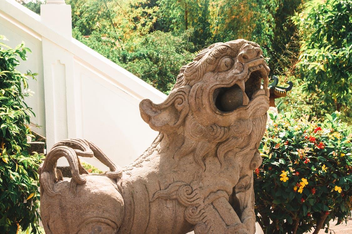 Immagine gratuita di doccione, leone, statua