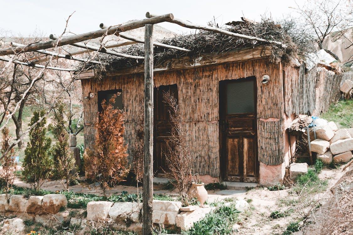 gubuk, kabin, kayu